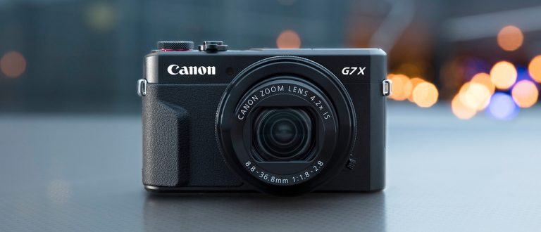 What Camera To Buy For Everyday Use
